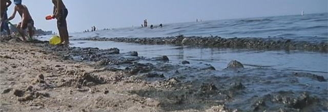 WOW! #Algae Problem at #Rochester's Ontario #Beach Park